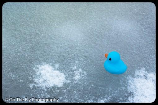 LD-Gerald-Snow-0095-2020-04-16