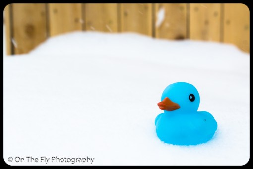 LD-Gerald-Snow-0102-2020-04-16