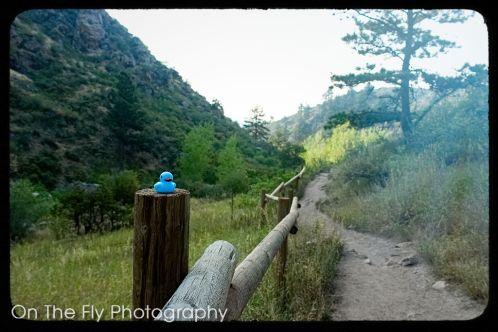 Horsetooth-Mountain-0009-2020-08-25