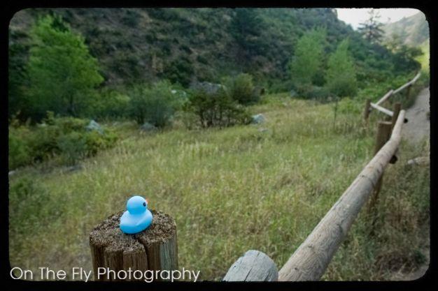 Horsetooth-Mountain-0015-2020-08-25