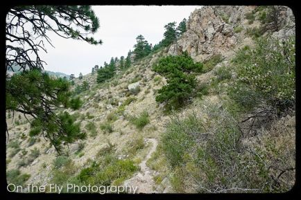 Horsetooth-Mountain-0055-2020-08-25