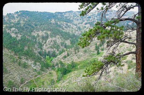 Horsetooth-Mountain-0056-2020-08-25