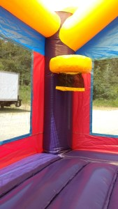 19Purple Passion bounce house