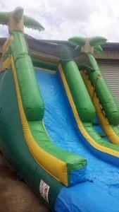 18Paradise Plunge Wet Dry slide