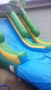 4Paradise Plunge Wet Dry slide