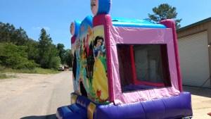 16Disney Princess bounce house moonwalk