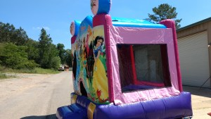 16Disney Princess bounce house moonwalk