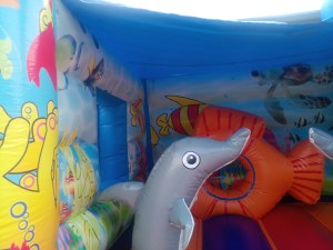 9Marino Aquarium bounce house