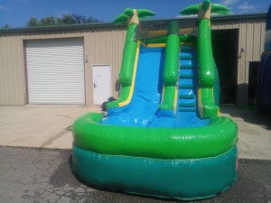 1Paradise Plunge Wet Dry slide