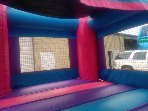 3Pink Castle bounce house combo