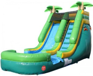 21Paradise Plunge Wet Dry slide