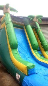 14Paradise Plunge Wet Dry slide