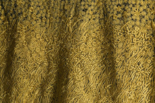 Image result for kate wells field of gold