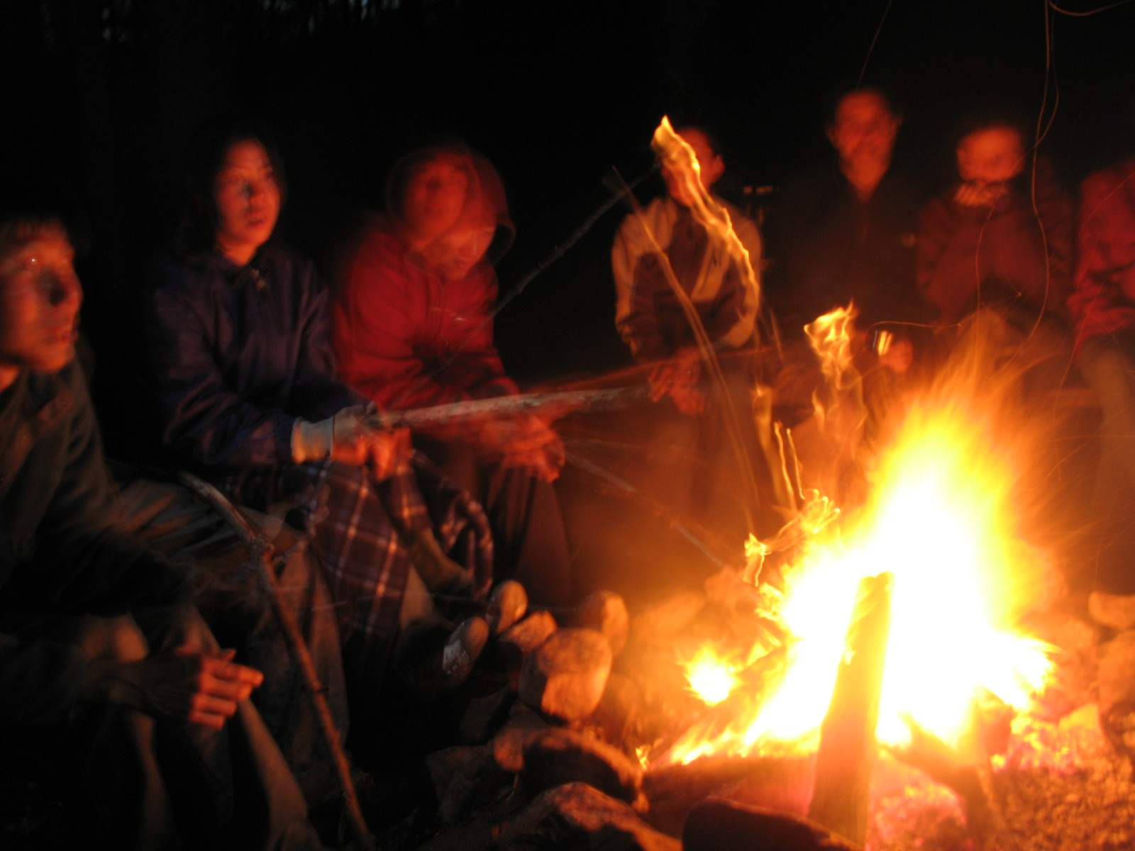 Photo copyright @ http://www.sccs.swarthmore.edu/users/06/adem/pictures/hickory/images/campfire%203.jpg