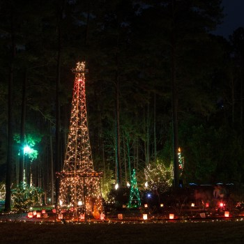 A photo of Christmas in Roseland