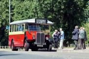 T31 at Worcester Park (the bus at London Bus Museum entranceway)
