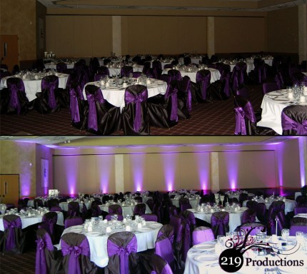 219 Productions - LED Uplighting at Villa Cesare