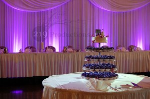 Drapery Curtain Backdrop at Avalon Manor in Merrillville, Indiana