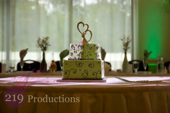 Patrician Banquets Wedding Cake Green Uplighting