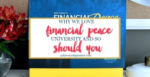 Why We Love Financial Peace University And So Should You