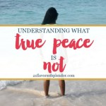 Understanding What True Peace Is Not