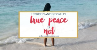 Understanding What True Peace Is Not