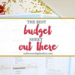 Why FPU Has The Best Budget Sheet Out There