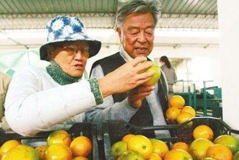 褚时健85岁种橙子成亿万富翁 批中国股市