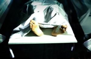 morgue-shutterstock-109090-webonly-450x293