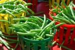 豌豆扁豆四季豆,哪种豆子不能生吃
