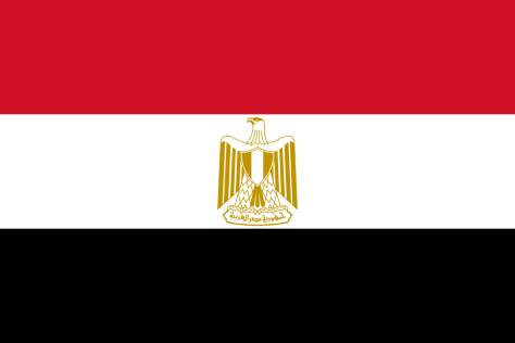 Flag of Egypt a Africa Cup of Nation 2019 finalist