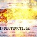 GLOBAL TERROR: The 'Conveniently-Left-Behind' Passport Phenomenon
