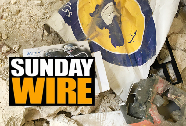 SUNDAY WIRE Syria copy
