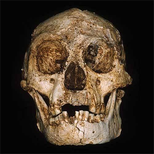 Ještě před 18 tisíci lety žil na indonéském ostrově Flores trpasličí lidský druh, nejmenší ze všech hominidů, zcela odlišný od druhu Homo sapiens.
