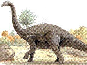 Obrovské množství kosterních nálezů, které patřily největším tvorům, kteří kdy na Zemi žili, objevili italští vědci v Argentině.