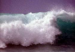 Včera zasáhla pobřeží Jávy vlna tsunami, která si vyžádala zatím na 340 obětí, dalších 160 lidí se pohřešuje.