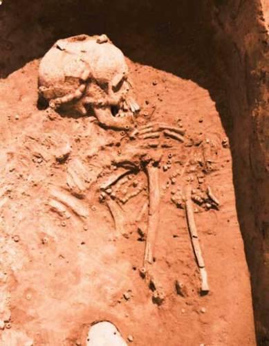 Před necelými 8000 lety vybudovali naši první zemědělci kultury s lineární keramikou na Moravě několik velkých, příkopem ohrazených osad. Není však jasné, co je k tomu vedlo. Jinde ve střední Evropě totiž své osady tímto způsobem nechránili.