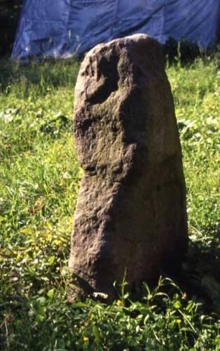 Na území České republiky stojí desítky velkých vztyčených kamenů, považovaných tradičně za pravěké megality. Je však tato víra, živená občas i přesvědčením o tajemné moci těchto kamenů, opodstatněná?