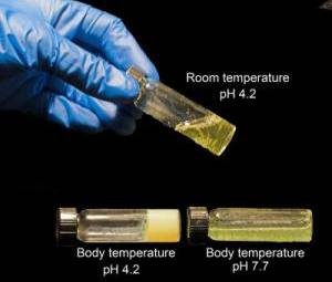 Vědci z Utažské univerzity vyvinuli nový mikrobicid.
