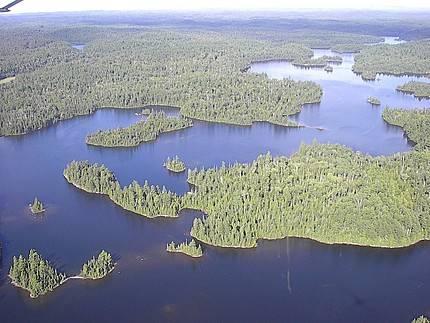 Jeden z nejkomplexnějších doposud sestrojených klimatických modelů ukazuje, že masivní odlesnění zdaleka nemusí znamenat přikládání pod kotel.