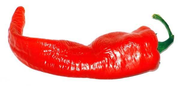 """Zelenina prodlužující život, sídlo ,,boha ohně"""", pikantní koření, barvivo, zdroj vitamínů a minerálních látek, pomocník při ochraně proti kardiovaskulárním onemocněním a nachlazení. Všechny tyto a mnohé další názvy označují právě papriku."""