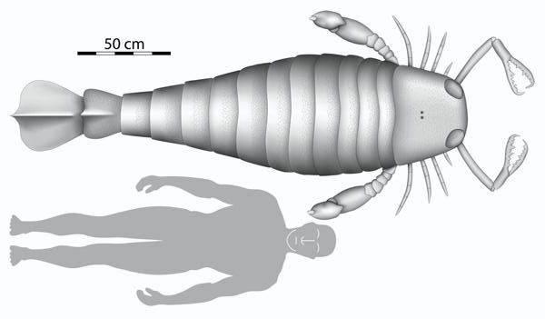 Britští paleontologové našli v Německu čelist obrovského bezobratlého živočicha.