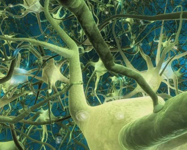 Tajemství lidských snů lidstvo odjakživa přitahovalo. Kde se berou ty bizarní obrázky, které se člověku honí během spánku? A daly by se třeba zrekonstruovat a poté třeba promítat? Kupodivu daly, japonští vědci v tomto ohledu provedli první krůčky.