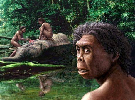 """Od objevení pozůstatků drobných človíčků na indonéském ostrově Flores v roce 2004 snad nemine měsíc, kdy by antropologové neohlásili nějakou novinku o jejich výzkumu. Zatím poslední zajímavou zprávou o """"hobitech"""", na které byli záhy překřtěni je to, že jejich vývojová linie je mnohem starší, než se čekalo."""