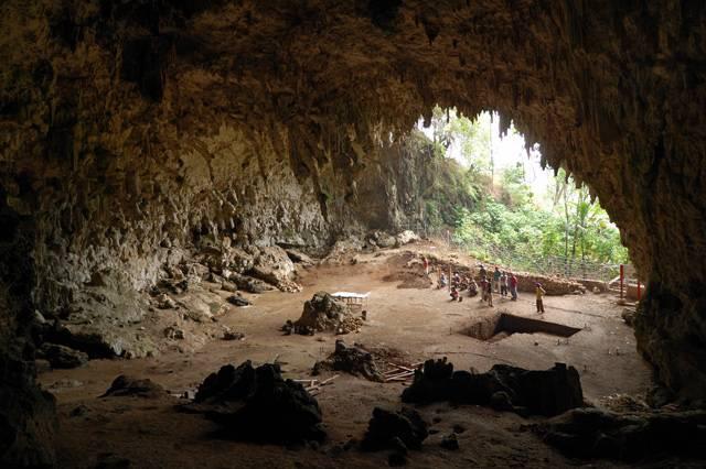 Indonéský ostrov Flores je jen o málo větší než Středočeský kraj. Svou rozlohou tedy neoslní, přesto se sem sjíždějí vědci z celého světa. Důvod? Na ostrově byly v roce 2003 nalezeny pozůstatky zvláštního hominida. A od té doby zde výzkumy pokračují.