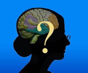 Během posledních asi 10 let ukázala řada studií, že čím déle člověk pobyl v některém ze vzdělávacích ústavů, tím hůře si na něj došlápne degenerativní onemocnění mozku – demence. Vědci z britské Cambridge nedávno zjistili proč.