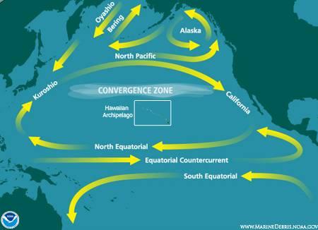 Běžně máme za to, že barva oceánů je modrá. To však není tak docela pravda - ve skutečnosti se totiž mění místo od místa podle toho, jaká je v ní koncentrace fytoplanktonu. Podle posledních výzkumů je koncentrace zelených řas obrovsky významným faktorem pro cirkulaci vzduchu a zejména tvorbu hurikánů.