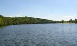 Bude Hostivařská přehrada bez sinic?