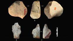 V Asii se objevili lidé již před 2,12 miliony lety