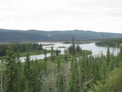 V Kanadě bylo nalezeno zachovalé tělo vlka z doby ledové